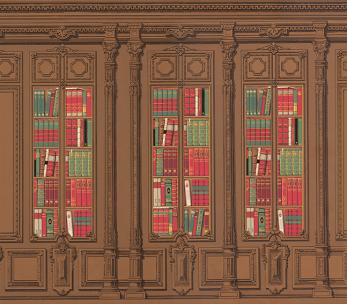 Colonettes et lambris avec montage bibliothèque