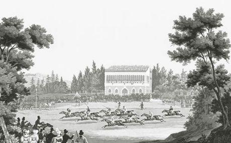 Les courses de chevaux : lés 19 à 24