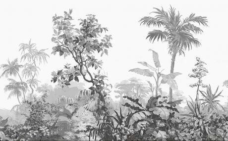 Isola Bella (monochrome): complete scenery